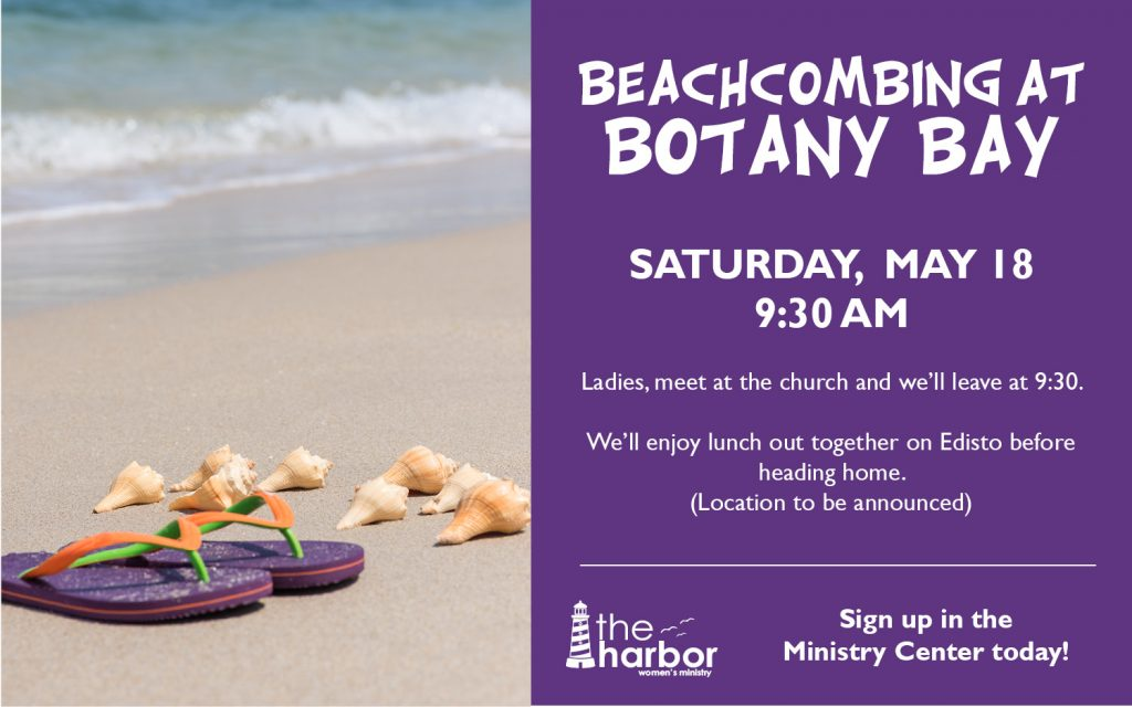 Ladies Beach Day: Beach Combing at Botany Bay