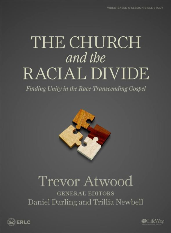 The Church and the Racial Divide book cover