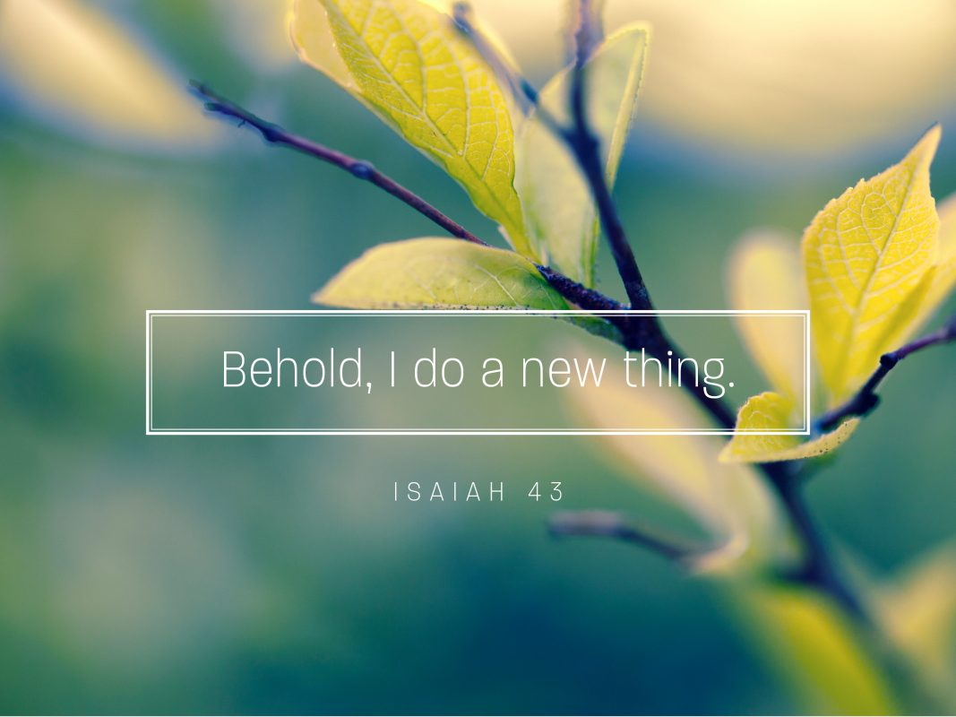 BEHOLD I DO A NEW THING SERMON GRAPHIC_AUDITORIUM